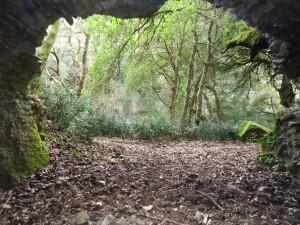 I luoghi segreti a due passi da Roma (nove) grotta presso Grotte Franca