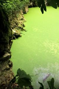 il lago sul fondo del pozzo del merro