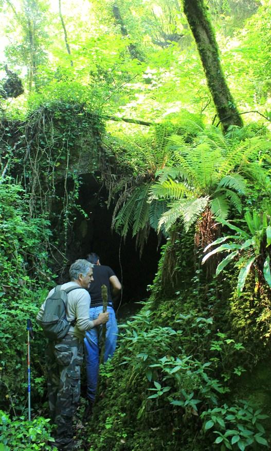 caverna onirica