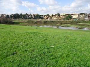 Luoghi segreti Roma il lago temporaneo di viale Ionio 3