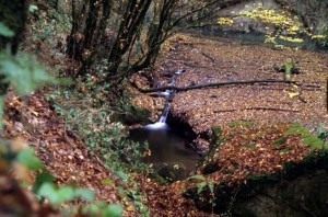 luoghi segreti a 2 passi da Roma cremera in autunno