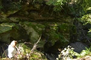 alla scoperta dei luoghi segreti le sorgenti del Cremera