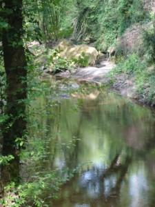 2 passi da roma - alle sorgenti del cremera
