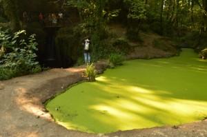 i laghetti antistanti il fosso degli Olmetti