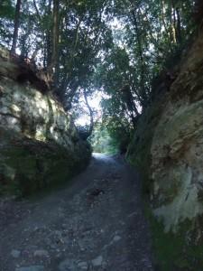 la prima tagliata che dal lago di Martignano porta all'altopiano