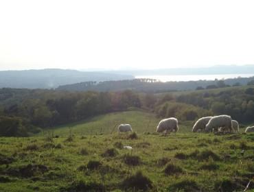 panorama dall'altopiano presso il lago di Martignano con il lago di Bracciano sullo sfondo
