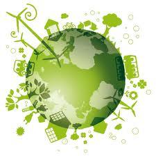 smart green e stupid green