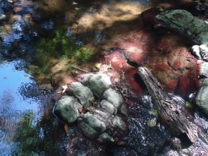tavolozza di colori fra le cascatelle