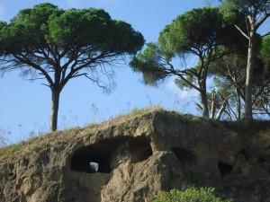 le rocce forate di Saxa Rubra
