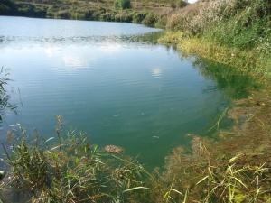 lago di lunghezza 1
