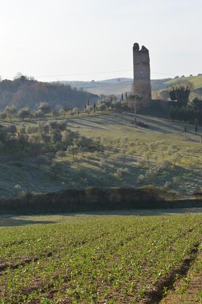 Torre Fiora presso Grotta Marozza