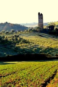 grotta marozza con la vicina Torre Fiora