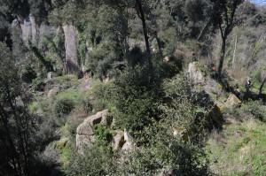 panorama dalla Torre di Filissano