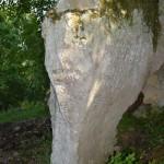 Belmonte nel parco di Veio 4