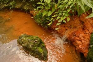sorgente termale presso i Bagni della Regina sul Cremera