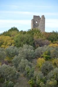 La Torre Baccelli