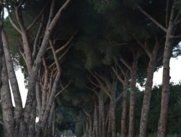 luoghi segreti nei dintorni di Roma