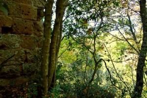 Castel Porciano sull'orlo della forra del rio cerreto