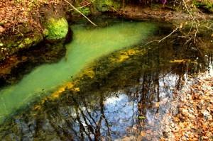 Il fiume di Smeraldo particolare