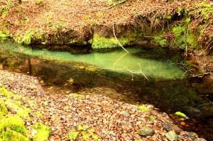 il fiume di Smeraldo 1