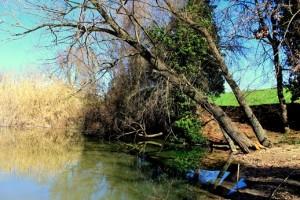 I Segreti dell'Inviolata - uno dei laghetti