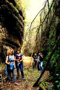 La Tagliata Grotte delle Cave (Parco dei Castelli Romani)
