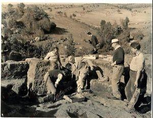 i luoghi segreti di Andreas Re Gustavo VI segue gli scavi presso Barbarano da lui finanziati