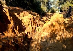 erosioni nel parco del pineto