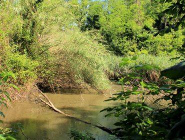 luoghi segreti a roma il lago segreto del Pineto