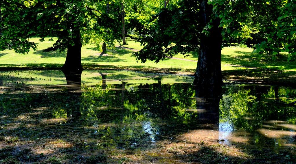 laghi segreti a roma Il lago effimero di villa Borghese