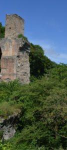 Torre degli Arci particolare