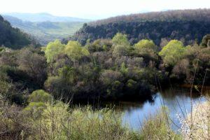 Guide per i luoghi segreti - I laghi della Mercareccia
