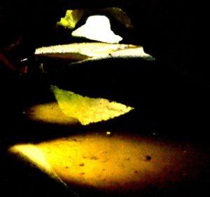 la galleria e la sorgente - parco di Veio