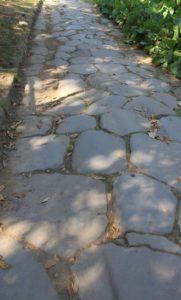 Stradafacendo Stradagustando Strada romana a Monte Gentile