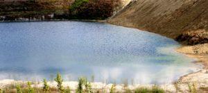 fra i laghi della Marcigliana