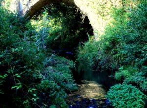segreti presso Sacrofano - antico ponte sul fosso della Torraccia