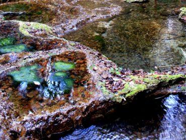 Il fosso dell'Acqua Raminga