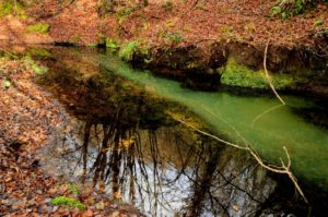 escursione del 22 ottobre - guide escursionistiche