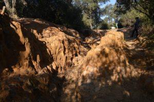 Le erosioni del Pineto