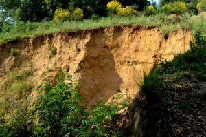 Le erosioni dell'Insugherata - si scende ripidamente nella valle