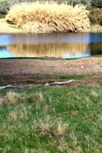 escursioni segrete - i laghi dell'Inviolata