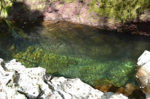 gli itinerari più avventurosi - nel canyon di Ponte Lupogli itinerari più avventurosi - nel canyon di Ponte Lupo