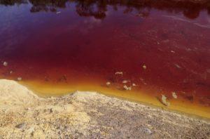 particolare dei laghi della solforata di Pomezia
