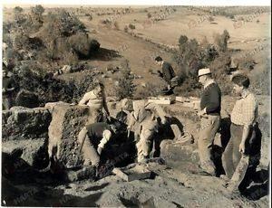 Re Gustavo VI segue gli scavi presso Barbarano da lui finanziati