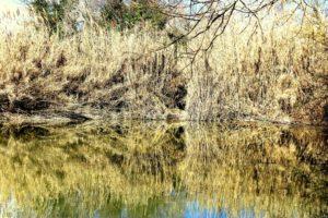 i segreti di Guidonia - fra i laghi dell'Inviolata