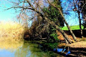 i segreti di Guidonia - uno dei laghi dell'Inviolata