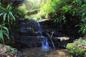i segreti di Guidonia - ruscello che collega i laghi dell'Inviolata