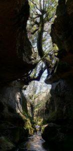 Il canyon del Fosso Rigomero - Vetralla - foto di M. Bordini