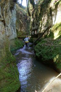 Lungo il corso del fosso Rigomero - foto di M. Bordini