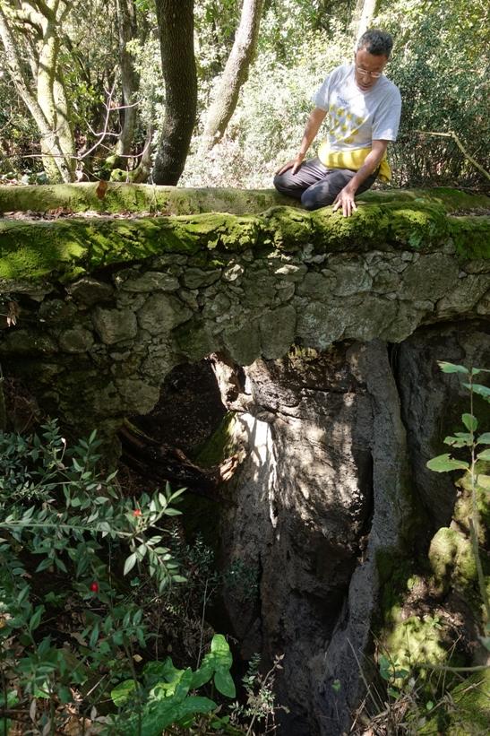 la via cava presso il Fosso Rigomero - foto di M. Bordini
